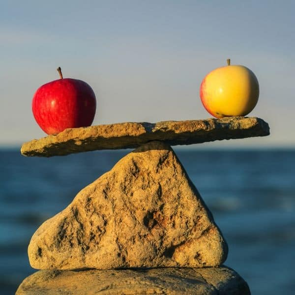 a rock on top of a rock balancing 2 apples