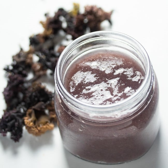 Irish Moss gel in a jar next to dried Chondrus Crispus